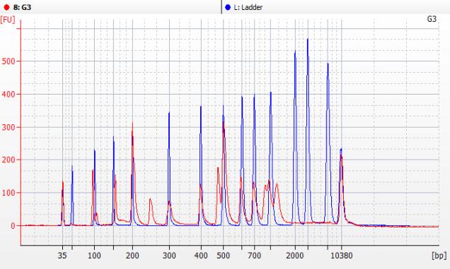 血清血浆cfDNA提取试剂盒