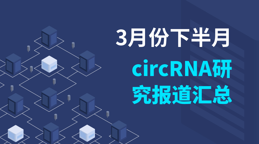 3月份下半月circRNA研究报道汇总