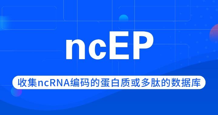 ncEP | 收集ncRNA編碼的蛋白質