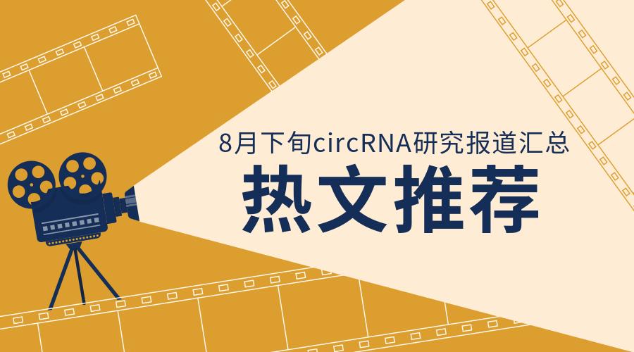 8月下半月circRNA研究报道汇总