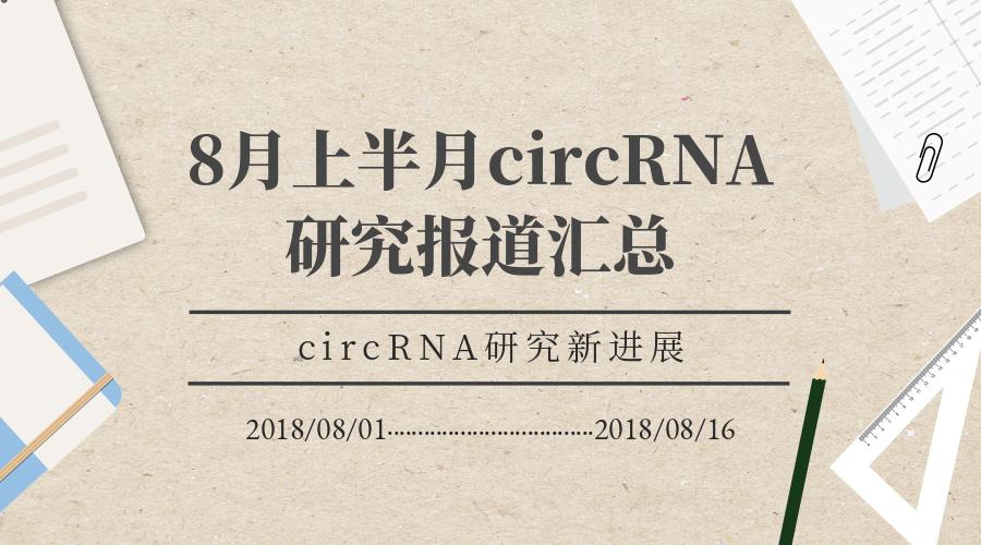 8月上半月circRNA研究报道汇总