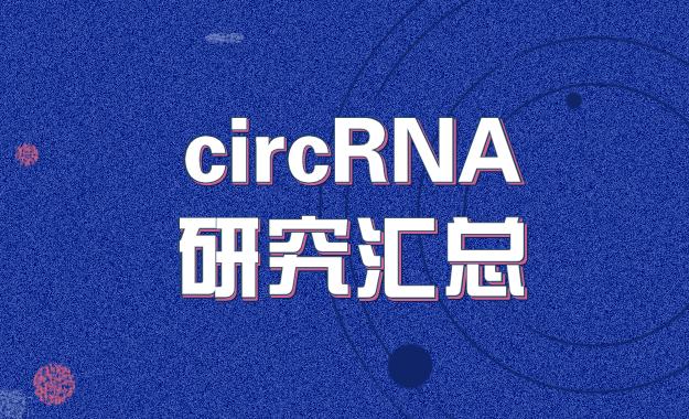 circRNA研究匯總 | 202004