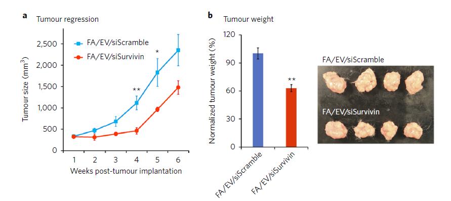 重磅:新型RNA纳米技术改造胞外囊泡EV