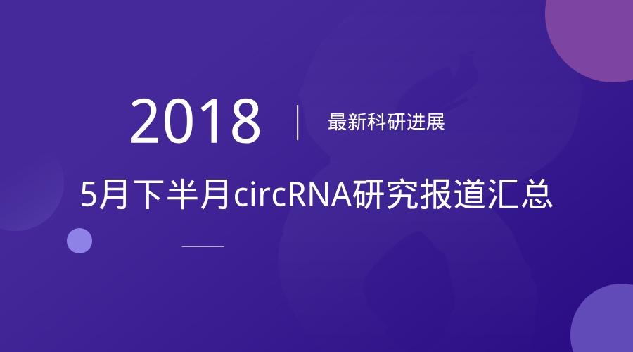 5月下半月circRNA研究报道汇总