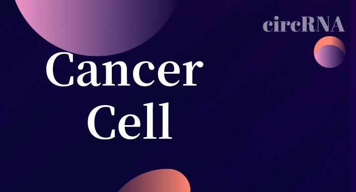 2020开门红!Cancer Cell报
