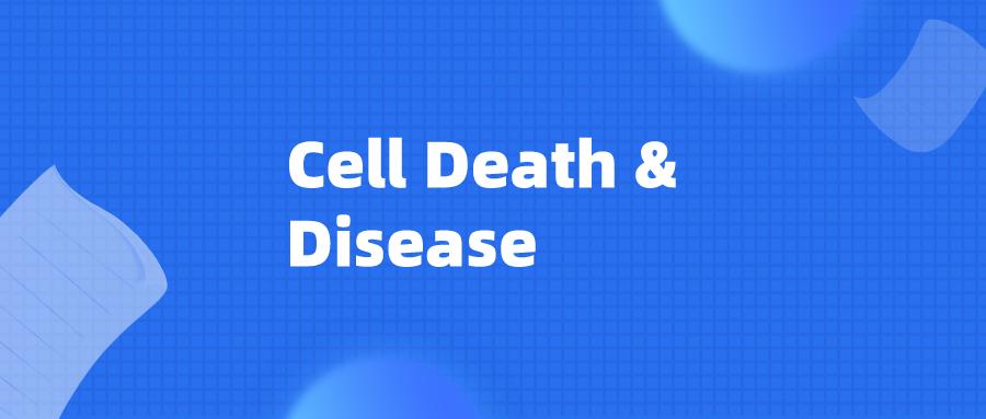 Cell Death & Disease:m6A促进circCUX1稳定,介导下他不是好奇吴姗姗在工作咽鳞状细胞癌放射耐受
