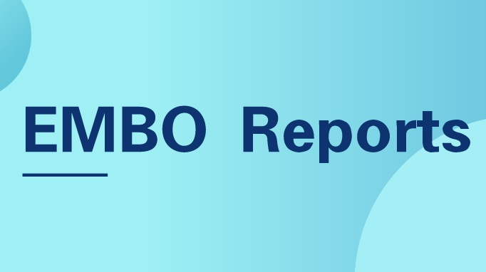 EMBO Reports | EB病毒编