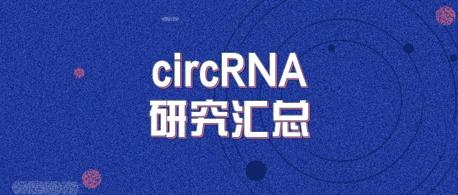 circRNA研究汇总 | 20210412-0418