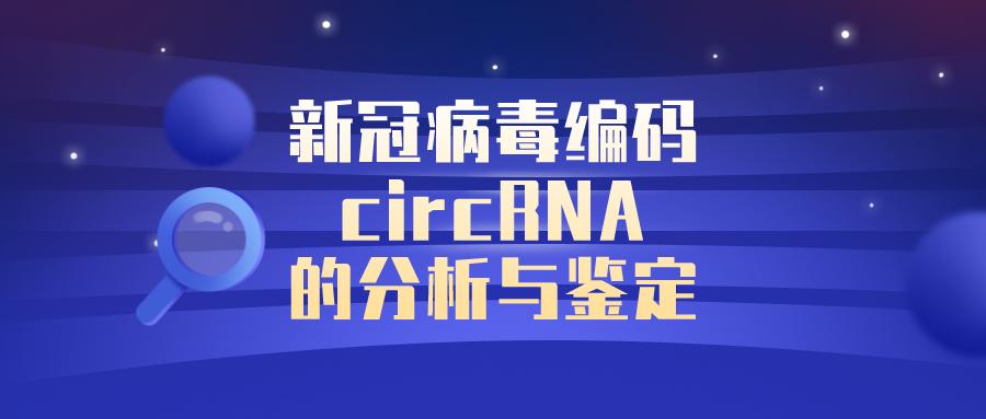 最新进展:新冠病毒编码circRNA的分析与鉴♀定