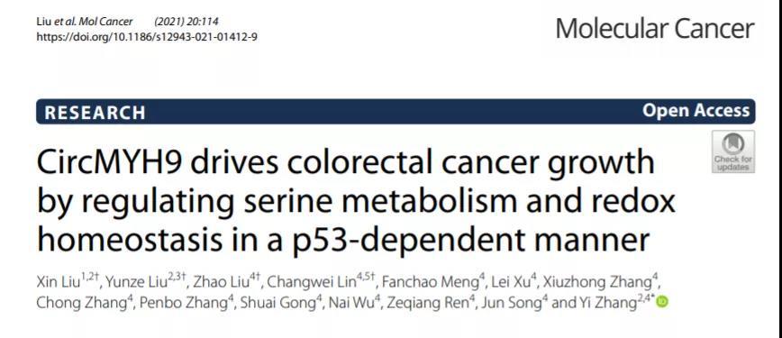 Mol Cancer | 张易团队发现内含子环状RNA在CRC中潜在的作用机制