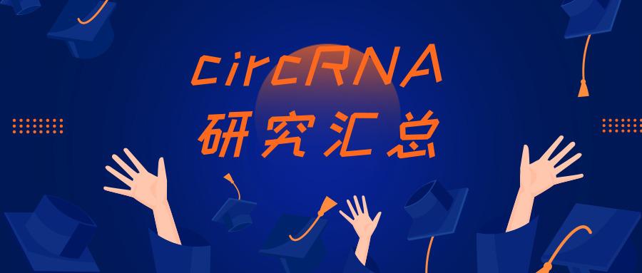 circRNA研究匯總 | 201910